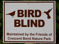 At the Bird Blinds